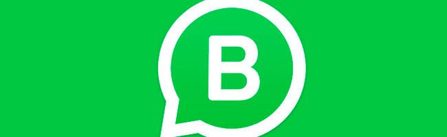 Vantagens do Whatsapp para empresas