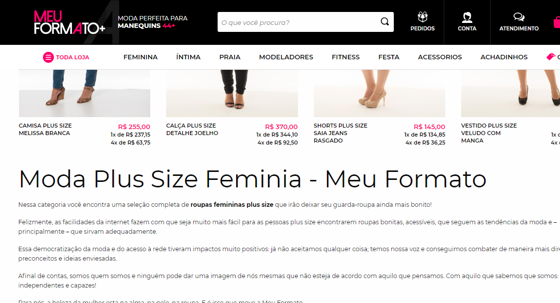 Otimização de sites (SEO): Meu Formato+