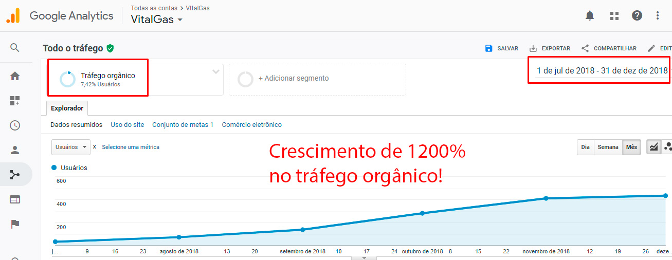 Otimização de sites (SEO): Vitalgas